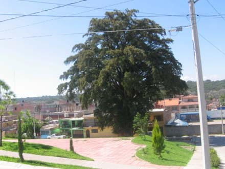 Ameca-Jalisco
